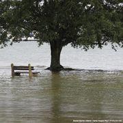 自然災害から命を守る 洪水が起きた場合の避難方法